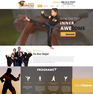 Ormond beach karate website design